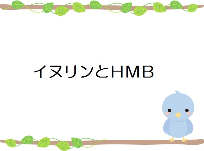 イヌリンとHMB